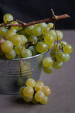 Raisins verts frais Photographie stock libre de droits