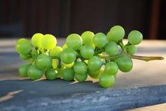 Raisins verts sur la table Photographie stock libre de droits