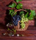 Raisins, vin rouge et vigne Image libre de droits