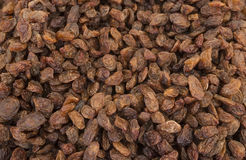 Raisins. White raisins. Yellow raisins. Raisin texture. Raisin background. Royalty Free Stock Images