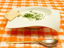 Raita. Indian specialty soup in a white bowl Royalty Free Stock Photo