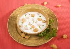 Raita, alimento indiano Fotografie Stock