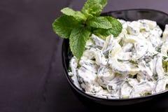 Raita indiano do pepino com iogurte, hortelã, coentro Tzatzi grego Imagens de Stock Royalty Free