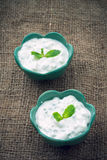 Raita sauce, India Royalty Free Stock Photography