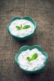Raita sauce, India. Raita is a sauce with cucumber and yoghurt from India Royalty Free Stock Photography