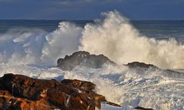 A raiva do oceano Imagens de Stock Royalty Free