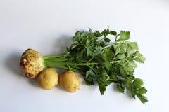 Raiz de aipo com emparelhamento dos vegetais de raiz das batatas Fotografia de Stock