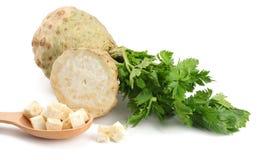 Raiz de aipo com a folha isolada no fundo branco Aipo isolado no branco Alimento saudável Fotos de Stock