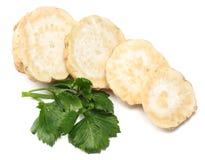 Raiz de aipo com a folha isolada no fundo branco Aipo isolado no branco Alimento saudável Fotos de Stock Royalty Free