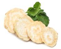 Raiz de aipo com a folha isolada no fundo branco Aipo isolado no branco Alimento saudável Foto de Stock