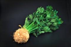 Raiz de aipo vegetal orgânica no fundo preto Fotos de Stock