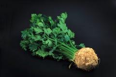 Raiz de aipo vegetal orgânica no fundo preto Fotografia de Stock