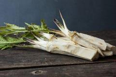 Raiz de armorácio fresca em um fundo de madeira Fotografia de Stock