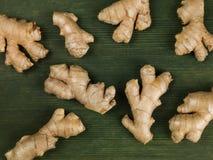 Raiz fresca Ginger Aromatic Spices fotos de stock royalty free