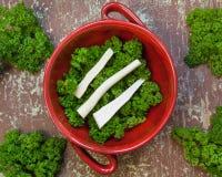 Raizes da salsa com folhas verdes Imagem de Stock Royalty Free