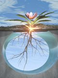Raizes e crescimento ilustração royalty free
