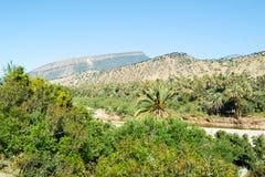 Raj dolina Agadir Zdjęcia Royalty Free