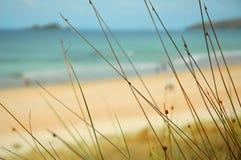 raj na plaży Zdjęcia Stock