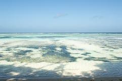 Raj plaża Seychelles los angeles Digue, Anse źródło d'Argent - Zdjęcie Royalty Free