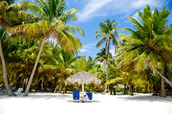 Raj plaża z palmami i sunbeds Fotografia Royalty Free