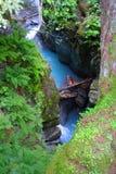 raj rzeki Obraz Royalty Free