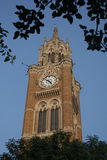 Rajabai Clock Tower in mumbai India at sunset Royalty Free Stock Images