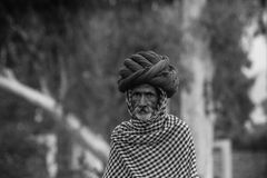 Rajasthan Attire. Old man in iconic Rajathani attire royalty free stock images