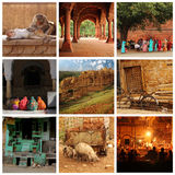 Rajasthan collage Royaltyfri Fotografi