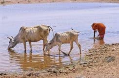 Rajasthan drinking water Stock Image