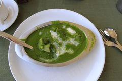 Rajasthan food: mutton in spinach gravy. Indian cuisine - rajasthan typical food - pieces of mutton in spinach gravy Royalty Free Stock Photography