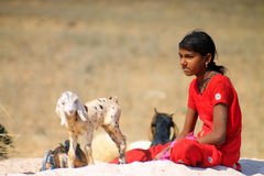 Rajasthan girl with animals. Young girl with her farm animals in Rajasthan village Royalty Free Stock Photo