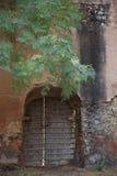 Rajasthan India door in wall Stock Photo