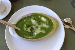 Rajasthan-Nahrung: Hammelfleisch in der Spinatssoße Lizenzfreie Stockfotografie