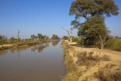 Rajasthan woda rzeczna Obraz Royalty Free