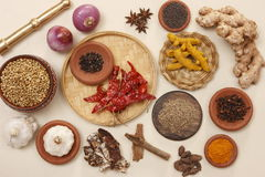 Rajasthani food ingredients. Ingredients which is commonly used in rajasthani cuisines Royalty Free Stock Image