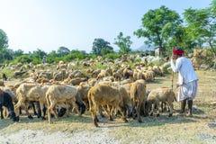 Rajasthani mężczyzna plemienny być ubranym Fotografia Royalty Free