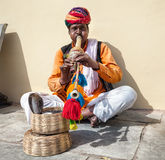 Rajasthani Man with cobra Stock Image