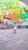 Rajasthani man playing musical instruments called& x22;ravan hattha& x22;. royalty free stock image
