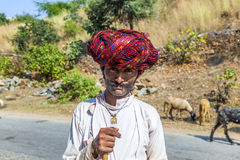 A Rajasthani tribal man wearing traditional colorful red turban. PUSHKAR, INDIA - OCT 22, 2012: goatherd moves with his goats to the next ground near Pushkar stock image