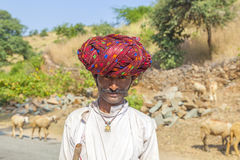 A Rajasthani tribal man wearing traditional colorful red turban. PUSHKAR, INDIA - OCT 22, 2012: goatherd moves with his goats to the next ground near Pushkar royalty free stock image