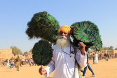 Rajasthani villager sells peacock feathers. Unidentified traditional Rajasthani villager sells peacock feathers during the Desert festival held on February 01 Stock Images