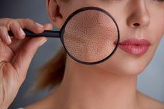 Rajeunissement et soins de la peau photo stock