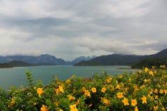 从Rajjaprabha水坝的观点 图库摄影