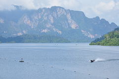 Rajjaprapha Dam in Surat Thani, Thailand Stock Images