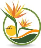 Raju kwiatu logo ilustracja wektor