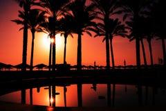 Raju wschód słońca na palmy plaży Obrazy Royalty Free