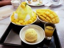 Rakad isefterrätt med mango royaltyfri fotografi