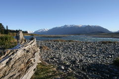 Rakaia River, Canterbury New Z Royalty Free Stock Photo