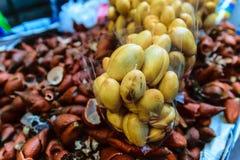 Rakam de Luk em Tailândia Fotografia de Stock