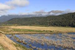 Rakatu Wetlands Royalty Free Stock Photography